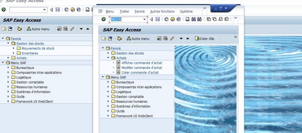 Mode SAP