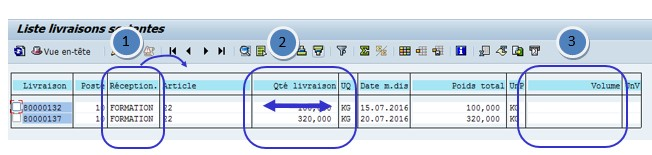 SAP reporting logistique