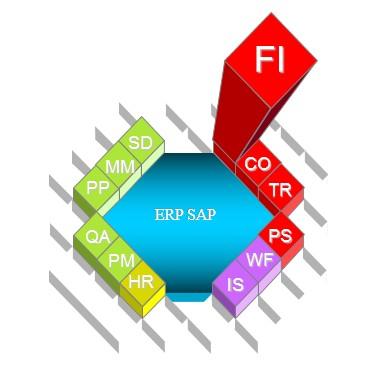 SAP Module FI