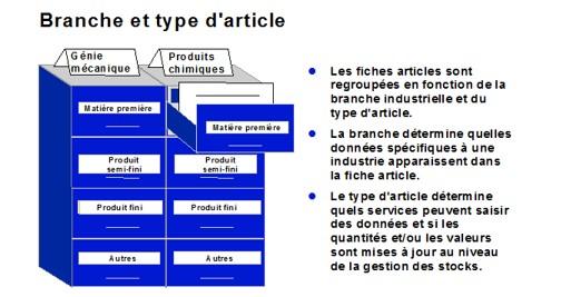 SAP Branche et Type article