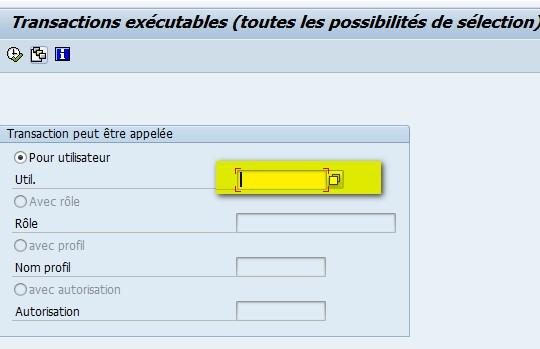 SAP SUIM transactions pour utilisateur