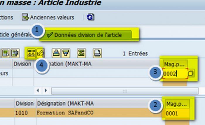 Modification simple et rapide avec la transaction MASS des fiches articles dans SAP