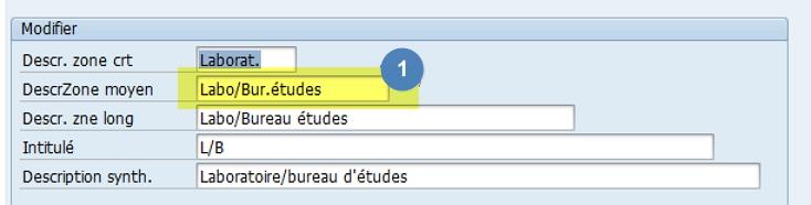 Comment changer les descriptions d'une zone SAP ? via l'élement de donnée ...