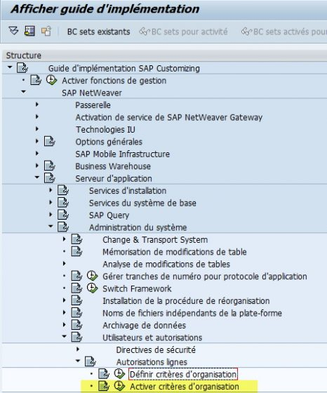 SAP - Activer Critère d'organisation