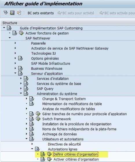 SAP Paramétrage critère organisation