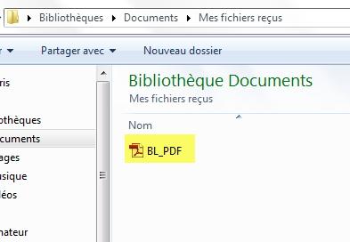 document PDF sous SAP