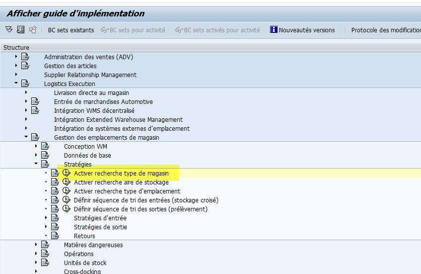 SAP WM stratégie entrée transaction spro