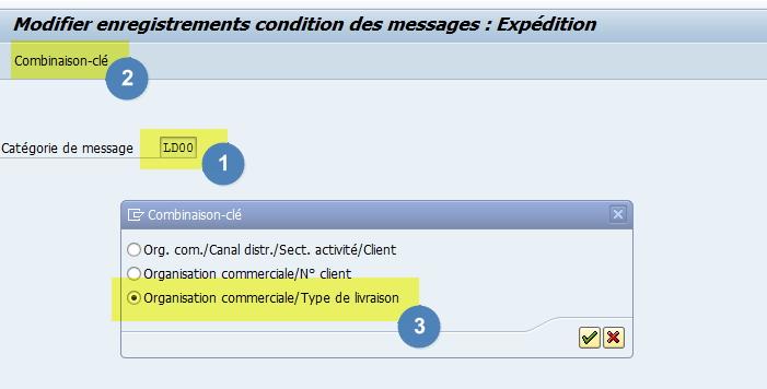 combinaison clé détermination message SAP