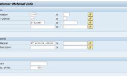 Code article client SAP