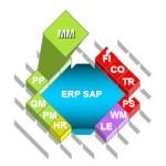 SAP ERP Module MM Gestion des stocks et des achats